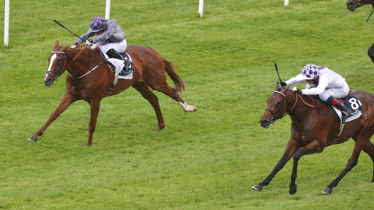 Poetic Flare (right): finished a close-up second to stablemate Mac Swiney in the Irish 2,000 Guineas
