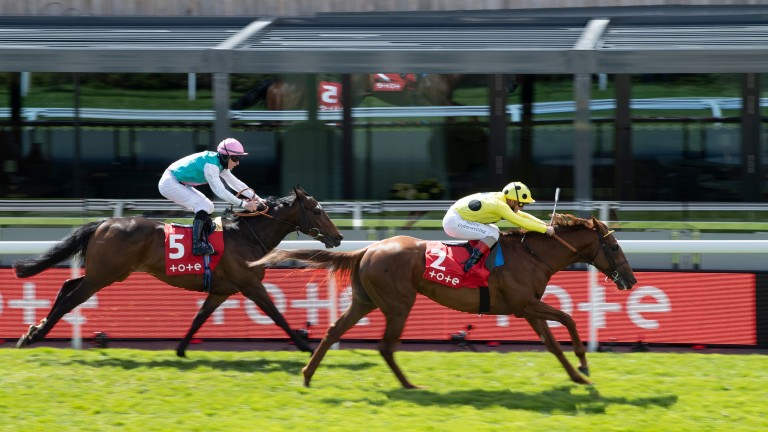 El Drama wins the Dee Stakes: Chester winner remains in contention for Chantilly Group 1