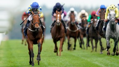 ASCOT, ENGLAND - OCTOBER 17: Hollie Doyle riding Trueshan (L, blue cap) win The Qipco British Champions Long Distance Cup during the Qipco British Champions Day at Ascot Racecourse on October 17, 2020 in Ascot, England. Owners are allowed to attend if the
