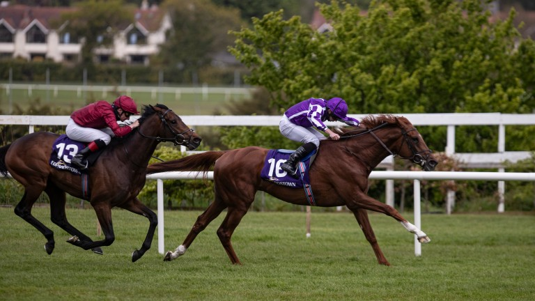 The Mediterranean (leader): reopposes with Ruling (second) in the Listed Nijinsky Stakes at Leopardstown