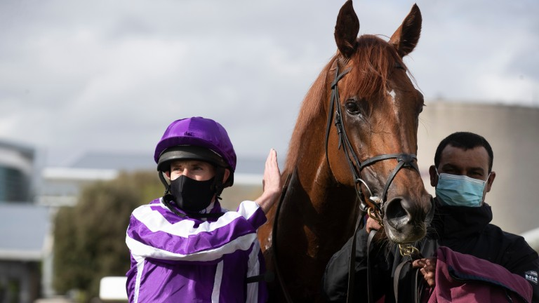 The Mediterranean: impressed when getting off the mark at Leopardstown last month