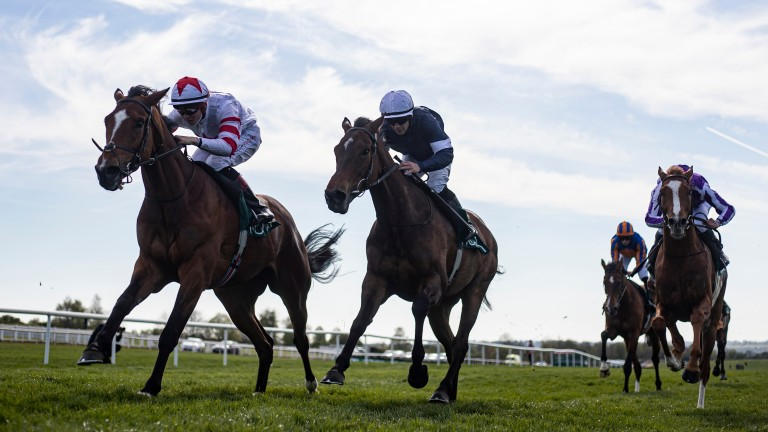 Baron Samedi: saw off Master Of Reality to land the Group 3 Vintage Crop Stakes at Navan in April