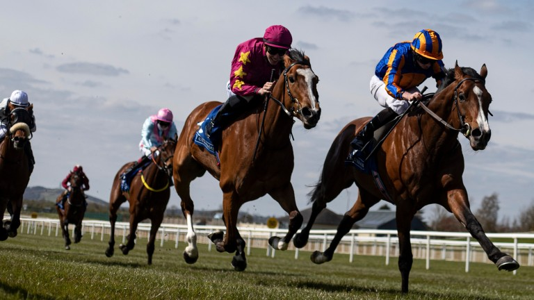 """Joseph O'Brien on Thundering Nights (left): """"She had a good run at the Curragh last time and we think the ten furlongs will suit her well"""""""