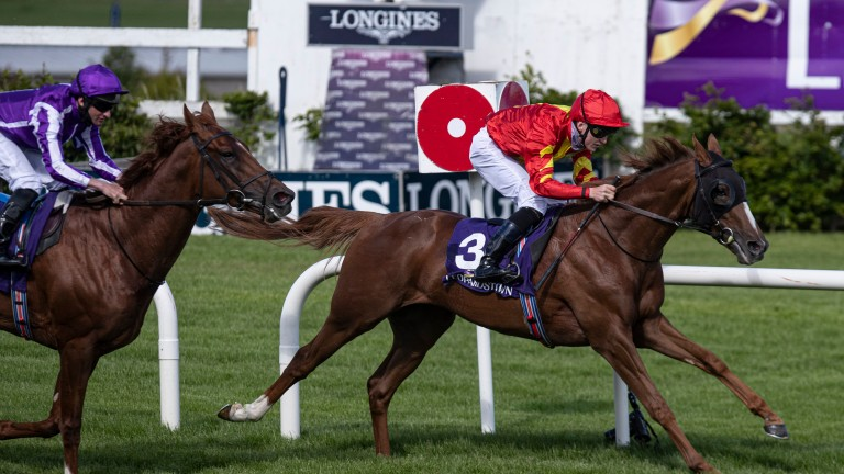 Fernando Vichi: victorious in the Nijinksy Stakes at Leopardstown on Thursday