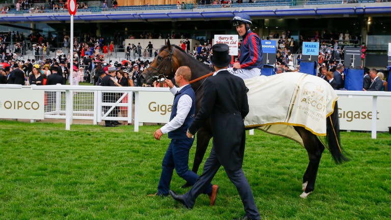 The Tin Man and Tom Queally parade in front of the stands after their Royal Ascot triumph