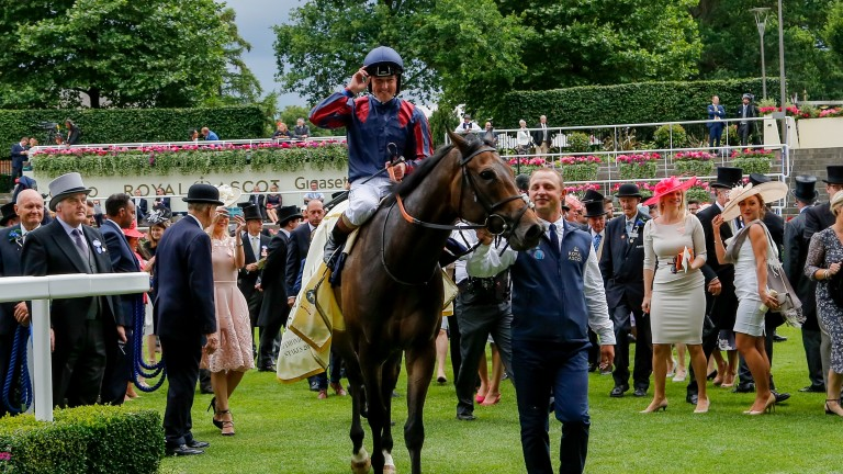 The Tin Man and Tom Queally after winning the Diamond Jubilee Stakes at Royal Ascot in 2017