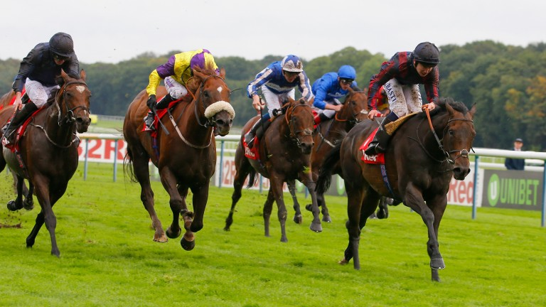 The Tin Man, ridden by Oisin Murphy, finally wins the Sprint Cup at Haydock in 2018