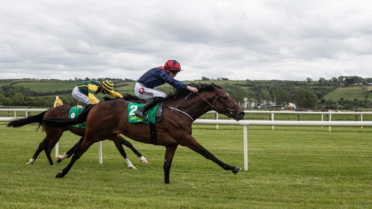 Admiral D scores at Listowel
