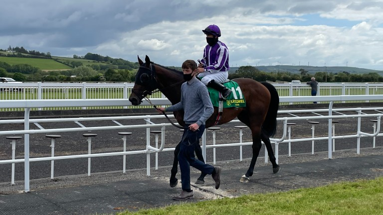 Metaphorical is led back in after helping supply Wayne Lordan with a treble at Listowel