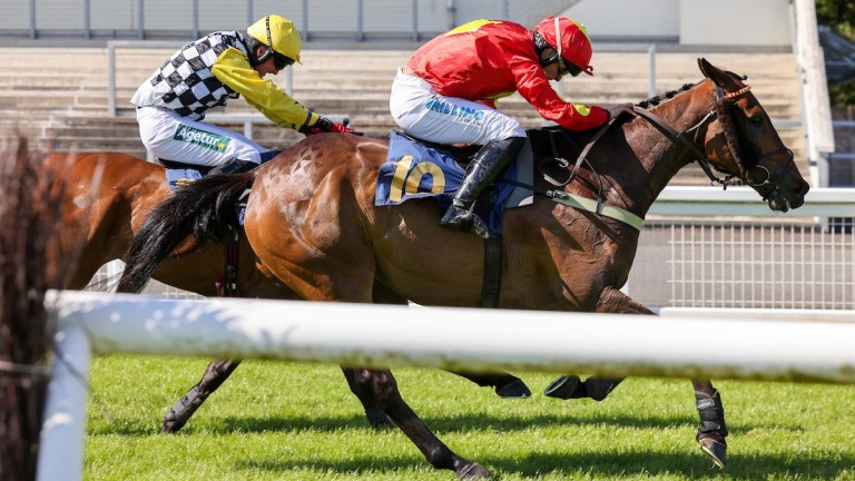 Landofsmiles holds off Talkischeap to pocket his fourth win of the year for Peter and James Bowen