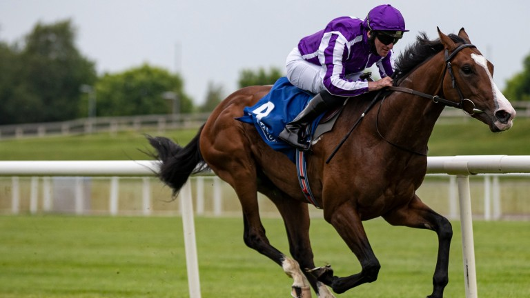 Point Lonsdale: can he continue Aidan O'Brien's impressive record in the Chesham Stakes?