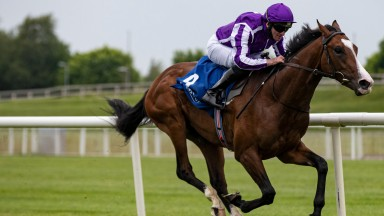 Point Lonsdale: could be another star for Aidan O'Brien