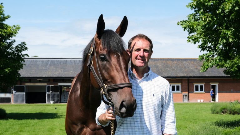 Charlie Appleby with his Derby winner Adayar at Moulton Paddocks on Monday morning