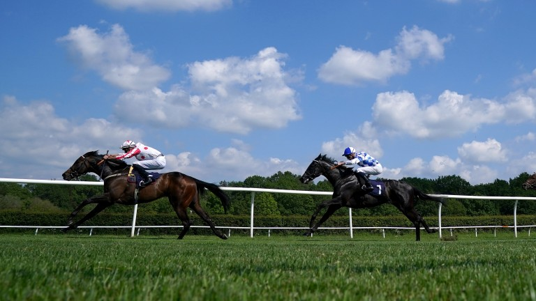 Adaay To Remember (left) followed up an impressive debut with victory at Lingfield