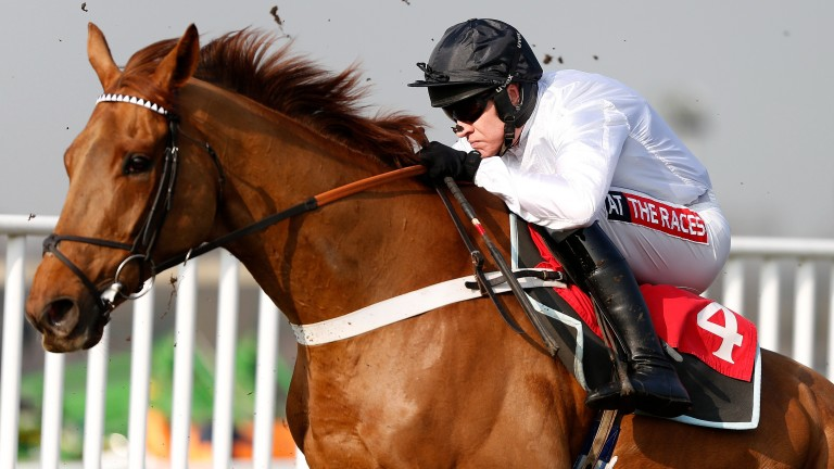 Top jockey Barry Geraghty riding What's The Scoop on the day in question at Sandown