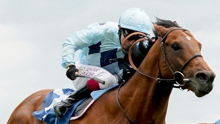 Diamond Jubilee Stakes favourite Starman spearheads a talented Royal Ascot team from Ed Walker's Kingsdown Stables