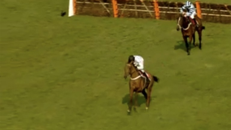 What's The Scoop (Barry Geraghty) is clear and seemingly cruising to victory at Sandown