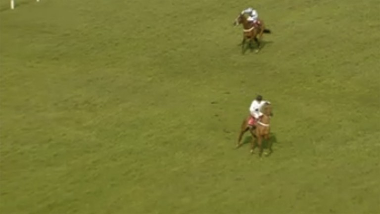 Stunned at Sandown: What's The Scoop has different ideas, and veers left up the straight