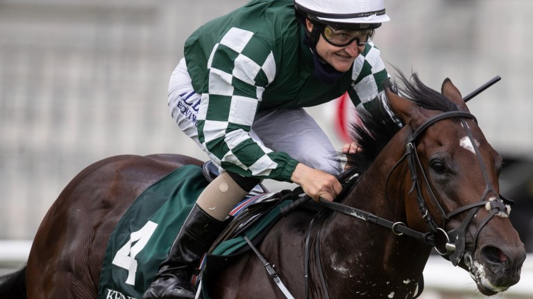 """Shane Foley on Lucky Vega: """"It's all systems go and we couldn't be happier with him"""""""