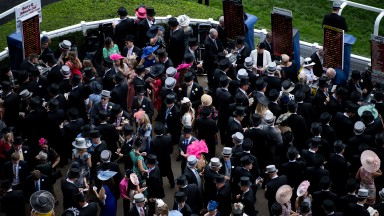 With the increased crowds at Royal Ascot next week the betting ring should be a hive of activity