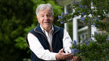 Summer bloomer: Sir Michael Stoute is hoping to extend his record haul of 81 winners at Royal Ascot