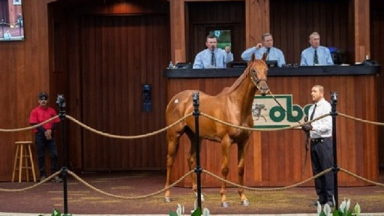 The Nyquist filly who topped the second day at the sale in Ocala