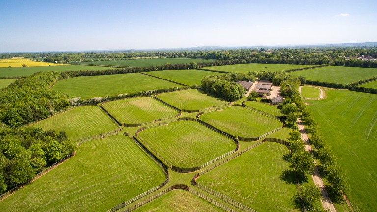 The 388-acre site has produced the likes of Harbinger and Sir Percy
