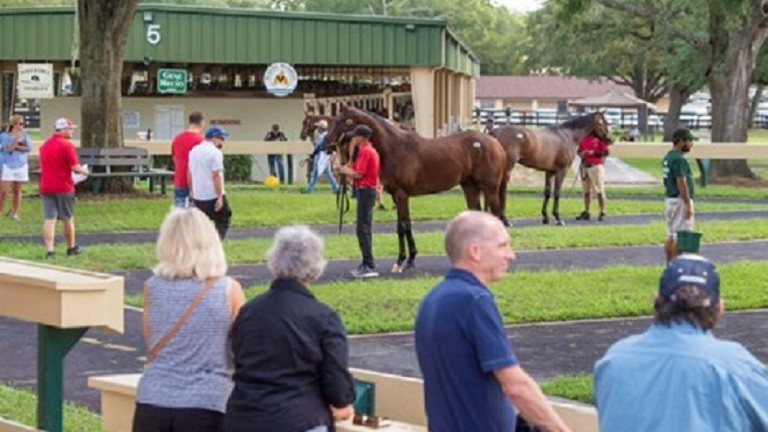 Vendors and buyers ensured a hugely successful OBS June Sale