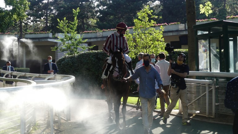 Polirico is cooled by the Auteuil misting machines after winning the Grade 2 Prix La Barka under Gaetan Masure