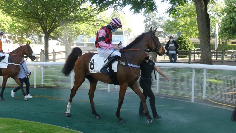 The future for Zurekin could be over fences after his third-placed effort in the Grade 2 Prix La Barka at Auteuil