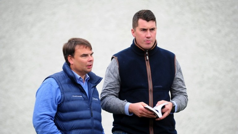"""Cathal Murphy (left): """"Starspangledbanner certainly injects speed and class into his mares"""""""