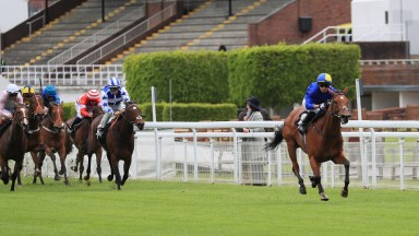 Flotus: Albany Stakes favourite makes an impressive winning debut at Goodwood