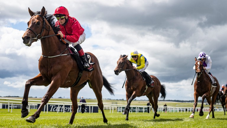 Castle Star: enters the Railway Stakes on the back of two decisive victories