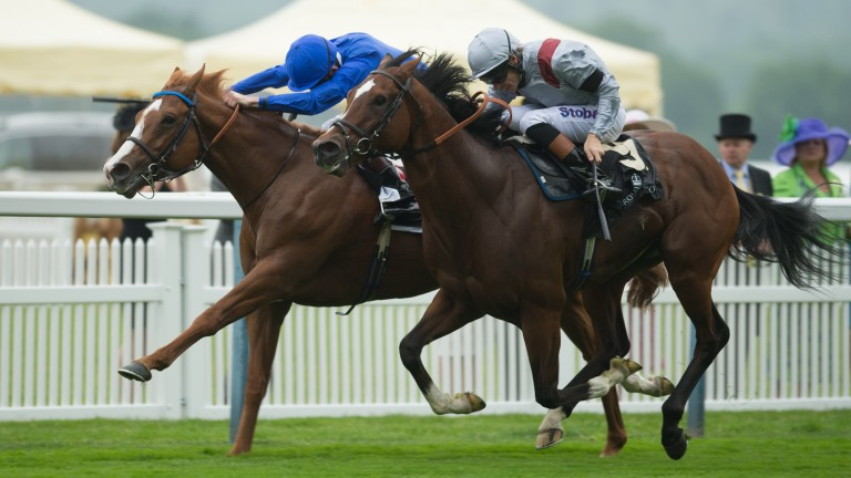 Dawn Approach beats Toronado to win the 2013 St James's Palace Stakes