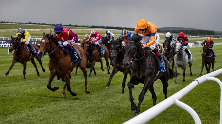 Visualisation (orange cap): the highest-rated entrant in the London Sale catalogue scores at the Curragh