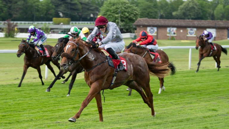 Ebro River wins the National Stakes at Sandown in May