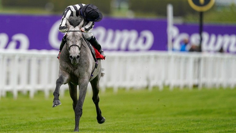Zinc White powers to victory at Sandown