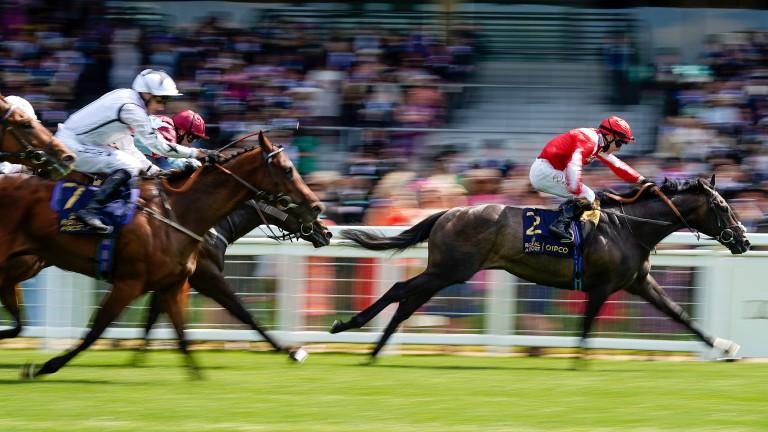 Eldrickjones (left): chased home Berkshire Shadow in the Coventry Stakes