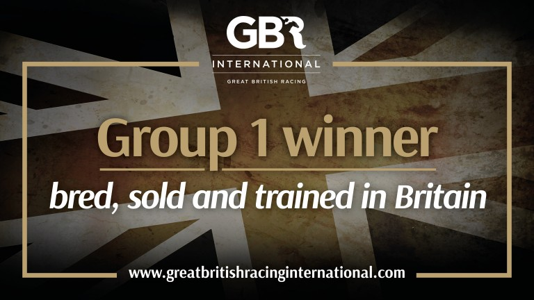 GBRI congratulate connections of Subjectivist: bred, sold and trained Britain
