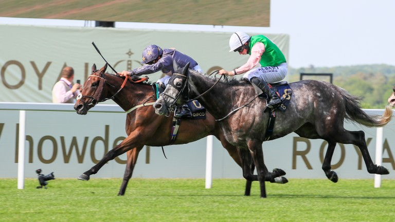 Reshoun (far side) fends off the challenge of M C Muldoon in the Ascot Stakes on Tuesday