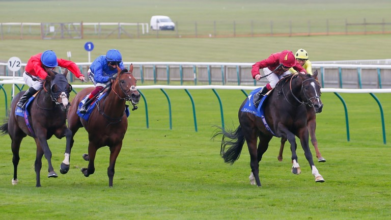 Success in the Group 2 Shadwell Joel Stakes was Kameko's fourth and final win