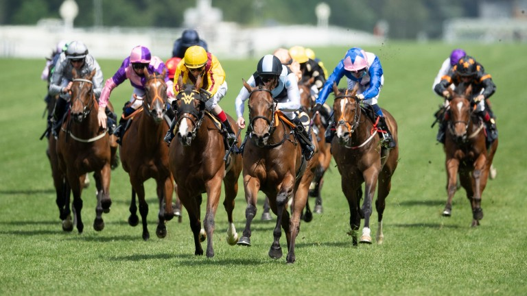 Quick Suzy (black and white silks) beats US raider Twilight Gleaming in the Queen Mary