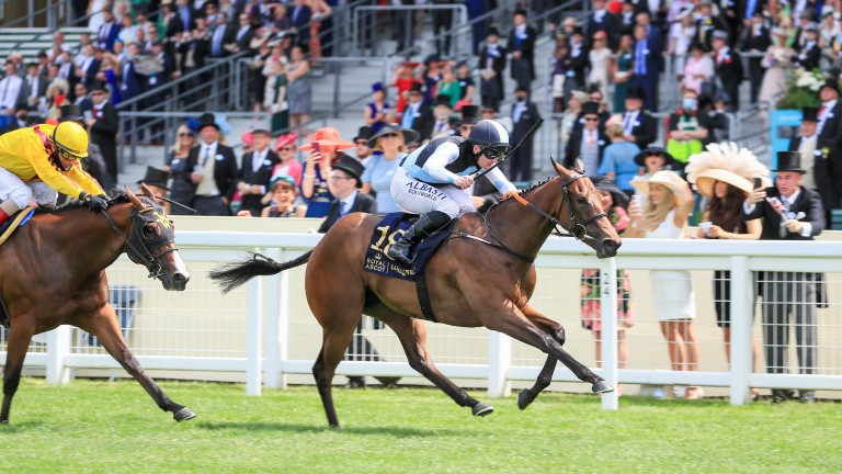 Quick Suzy was a striking winner for Gavin Cromwell and Gary Carroll in the Queen Mary
