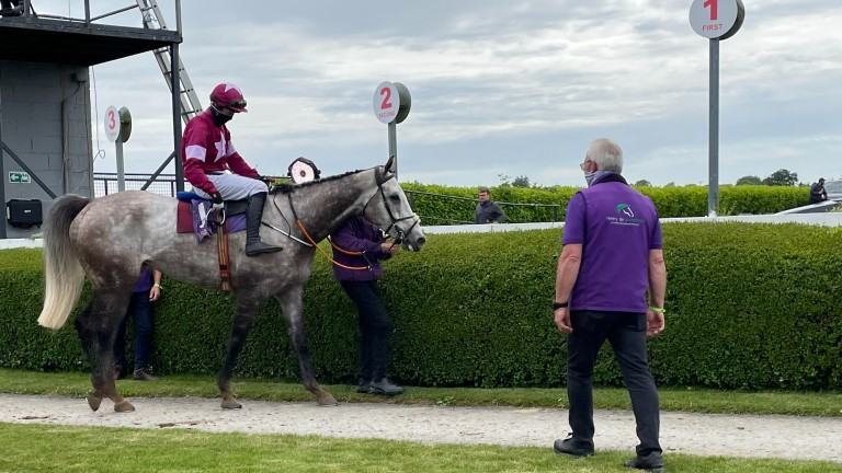 Cavalry Master and Mike O'Connor returns after landing the novice chase at Wexford