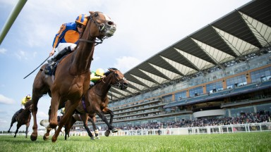 Love (Ryan Moore) wins the Prince Of Wales's StakesAscot 16.6.21 Pic: Edward Whitaker/ Racing Post