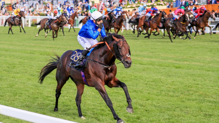 Real World bolts up in the Royal Hunt Cup