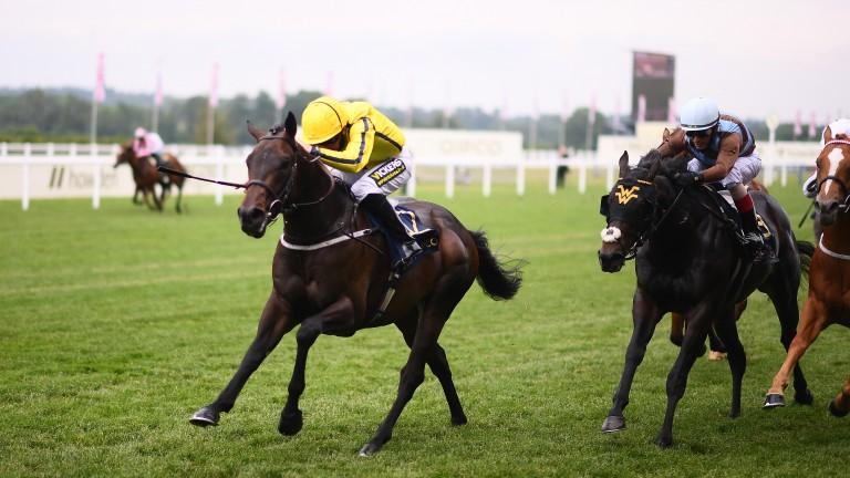 Paul Hanagan drives Perfect Power to victory in the Norfolk Stakes