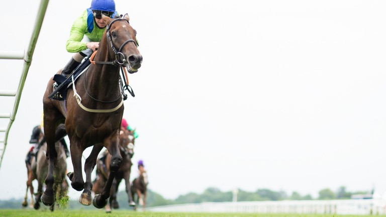 13-2 shot Subjectivist and Joe Fanning land the Ascot Gold Cup in fine style on Thursday