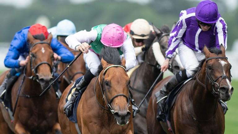 Surefire and Hector Crouch (pink cap) strike in the King George V