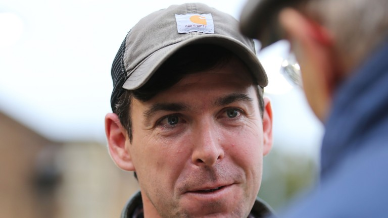 Joe Hartigan is the manager of Croom House Stud in County Limerick